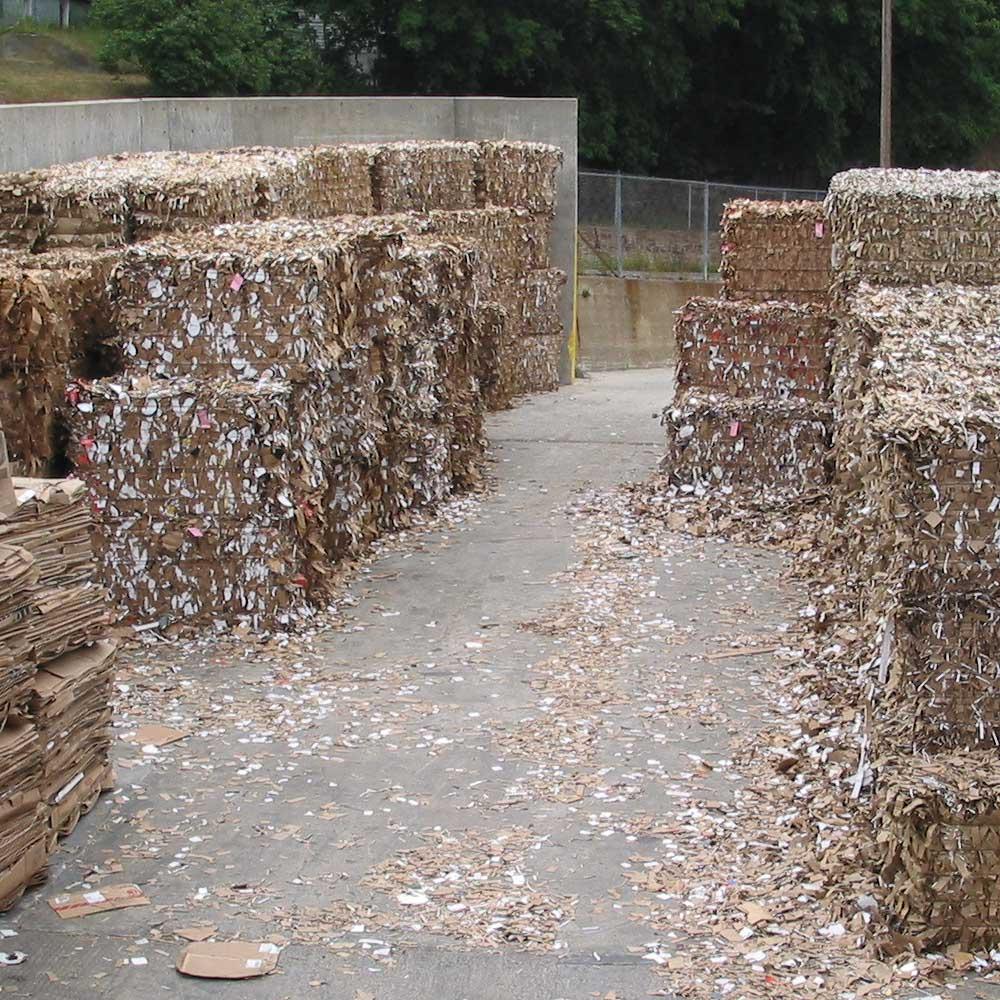Paper Mill Dock