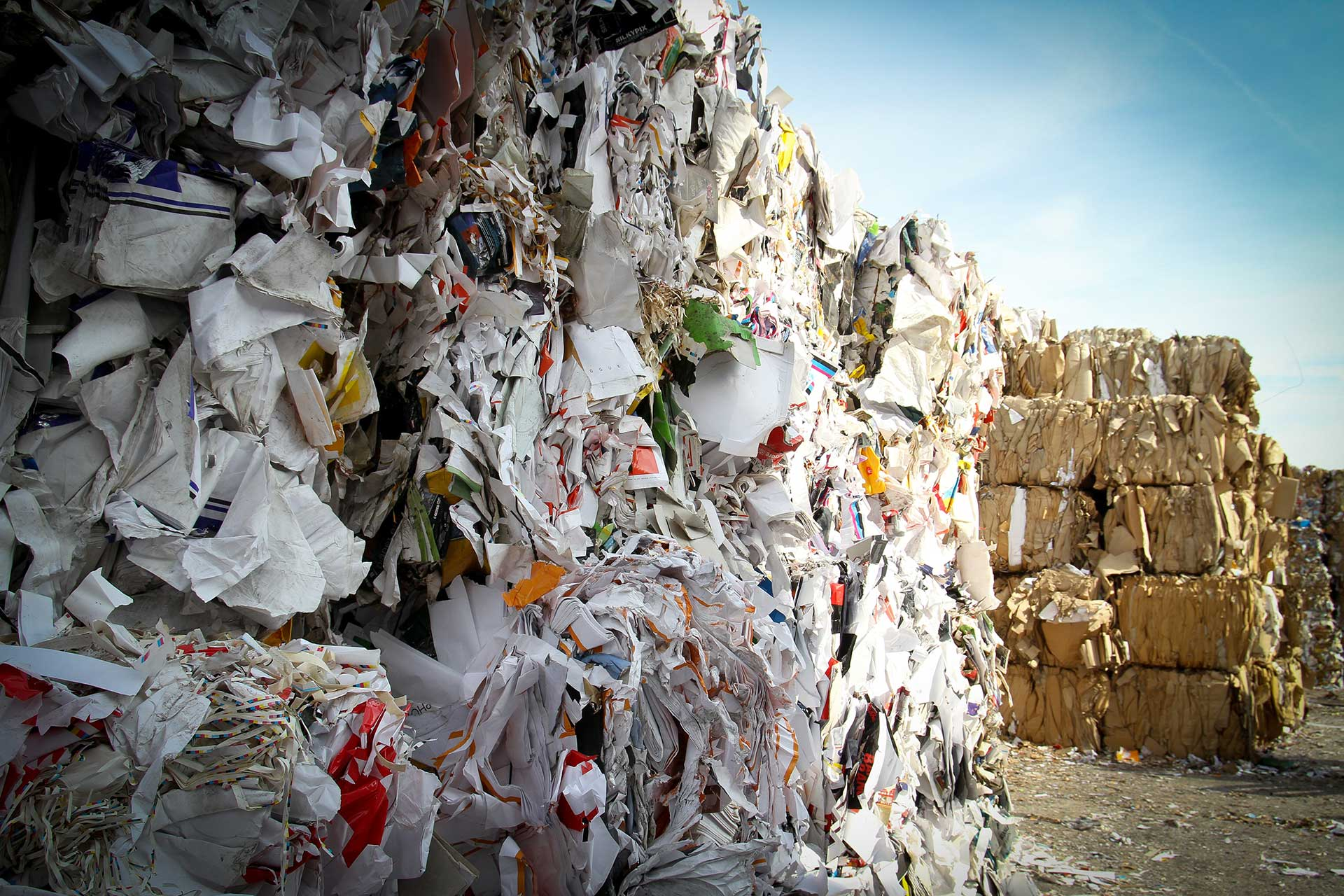 Recycled Paper Pile